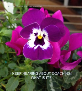 WHAT IS COACHING scaled