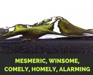 MESMERIC WINSOME COMELY HOMELY ALARMING